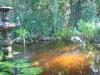 pond012