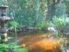 pond014
